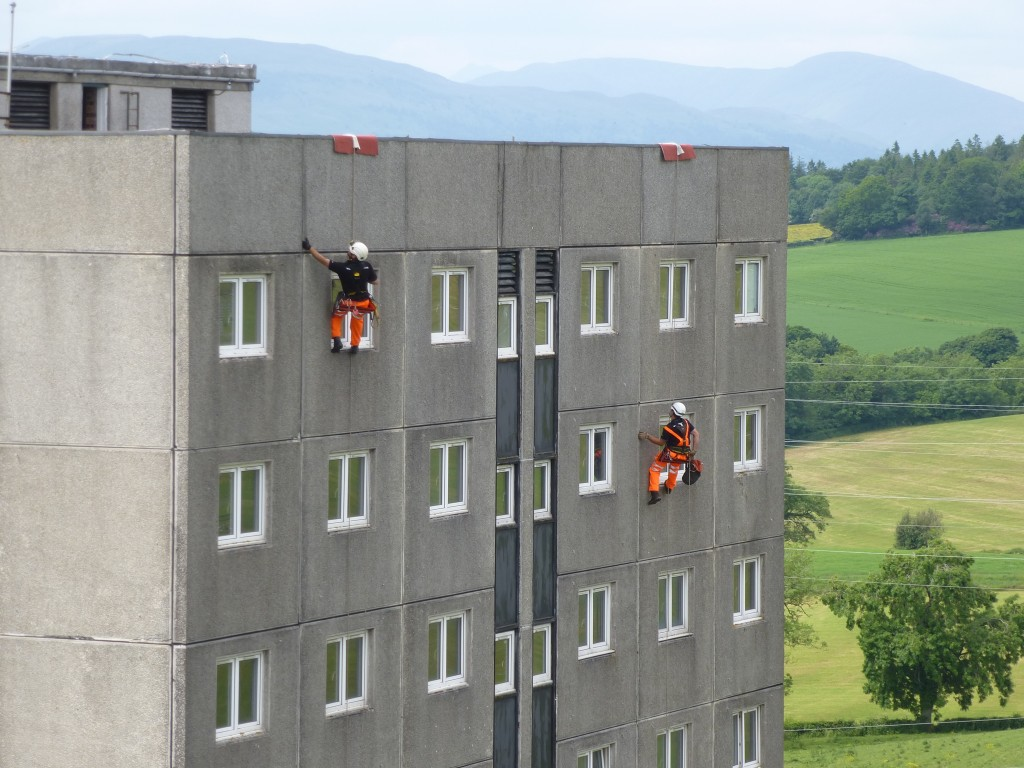 Bat survey of building using rope access techniques