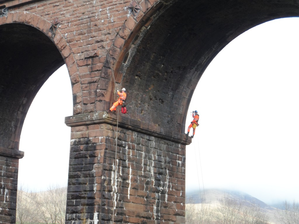 Bat survey of viaduct using rope access techniques
